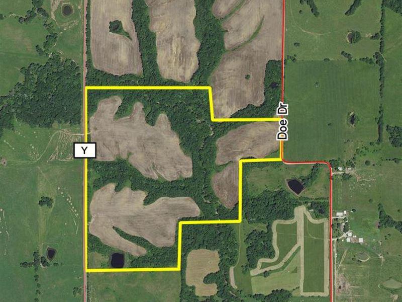 110 Acres Hwy Y Tract 3 : Purdin : Linn County : Missouri