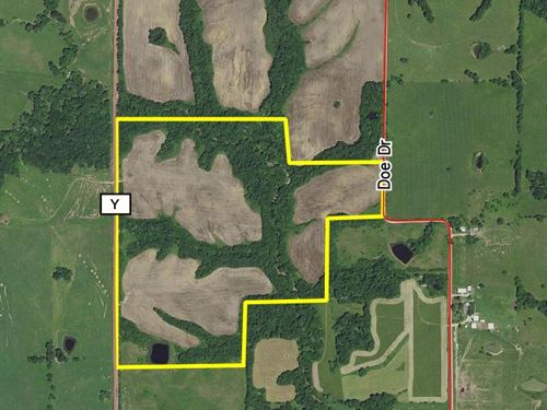 110 Acres Hwy Y Tract 3 : Purdin : Linn County : Missouri