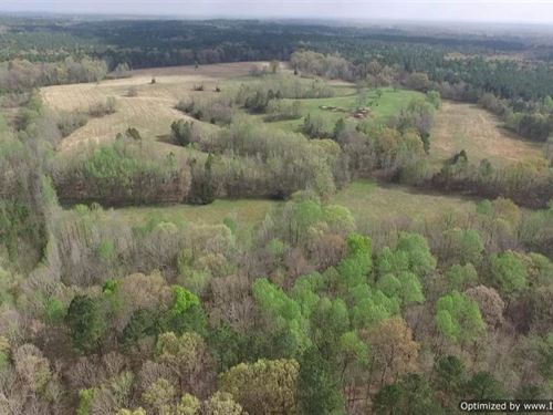 510+/- Acres : Holly Springs : Marshall County : Mississippi
