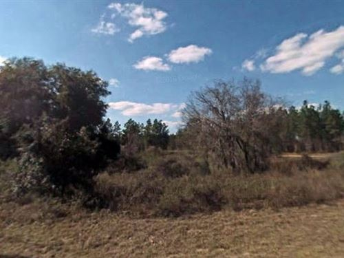 Marion County, Florida $25,000 Neg : Ocala : Marion County : Florida