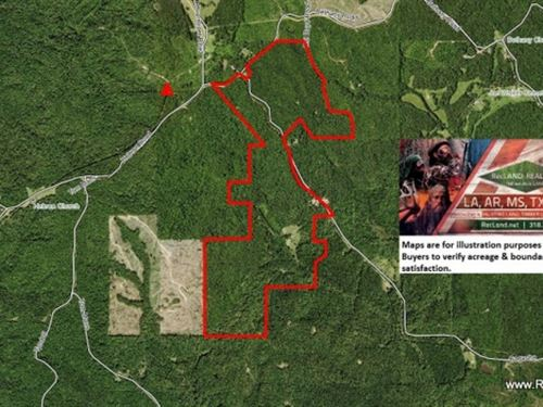 358 Ac Timberland & Hunting Wi : Kosciusko : Montgomery County : Mississippi