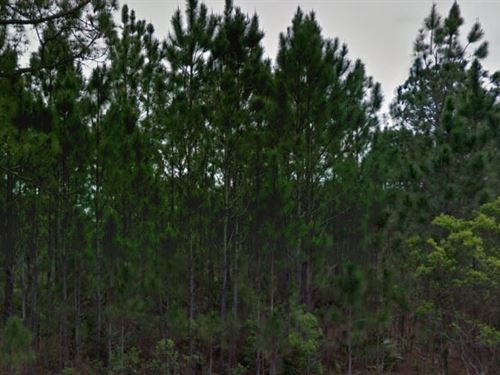 Polk County, Florida $7,000 Neg : Polk City : Polk County : Florida
