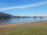 Best Cherokee Lake Front Lot : Mooresburg : Hawkins County : Tennessee