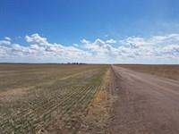 Disney Dryland : Lodgepole : Cheyenne County : Nebraska