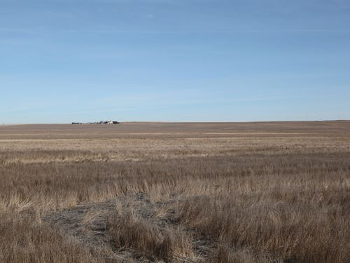 Dickson Trust Dryland : Wray : Yuma County : Colorado