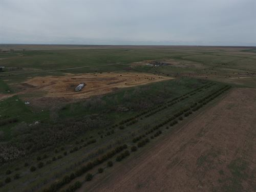 Land Auction In Hyde Co : Highmore : Hyde County : South Dakota