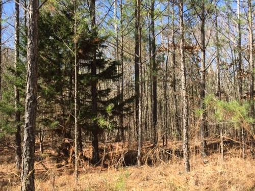 69+/- Acres : Ackerman : Choctaw County : Mississippi