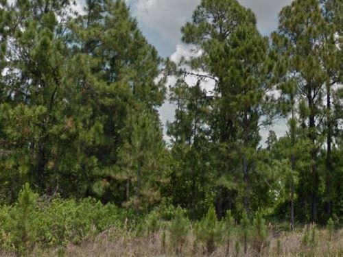 Polk County, Fl $14,000 Neg : Frostproof : Polk County : Florida