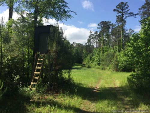 230+/- Acres : Hazlehurst : Copiah County : Mississippi