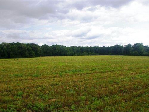 209 Acres Crop/Pasture Land, Southw : Smithdale : Amite County : Mississippi