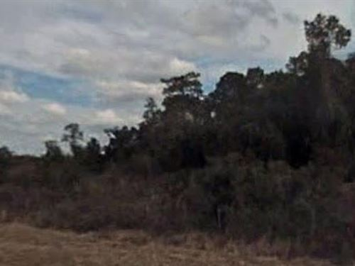 Marion County, Fl $9,000 Neg : Ocklawaha : Marion County : Florida