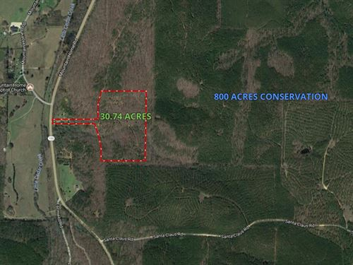 30.74 Ac Affordable Wooded Parcels : Cedartown : Polk County : Georgia