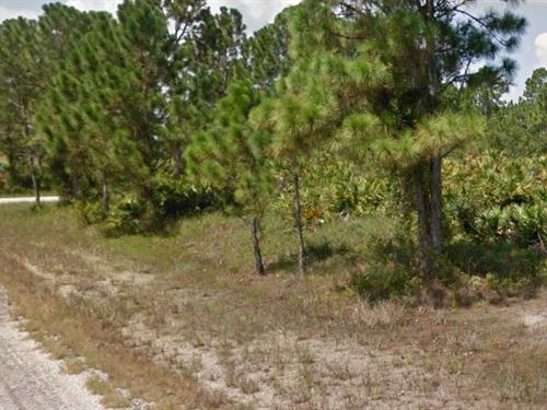 Lee County, Fl $15,999 Neg : Lehigh Acres : Lee County : Florida