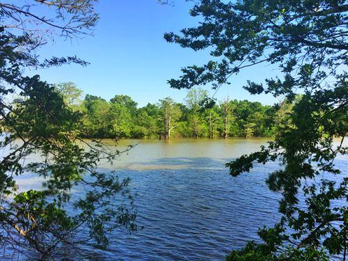 80 Acres +/- Arm Lake Reservoir : Bradford : White County : Arkansas