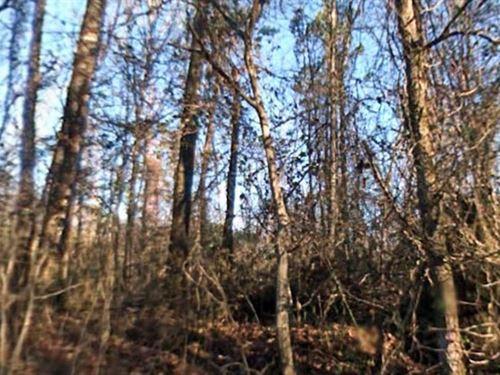 Garland County, Ar $25,000 Neg : Hot Springs Village : Garland County : Arkansas