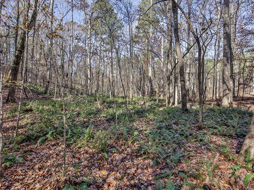 Shaver Farms : Monticello : Jasper County : Georgia