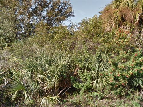 Lee County, Florida $25,500 Neg : Lehigh Acres : Lee County : Florida