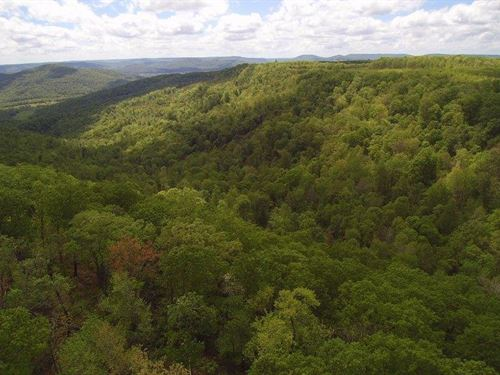 117+/-Acres Unrestricted With View : McMinnville : Warren County : Tennessee