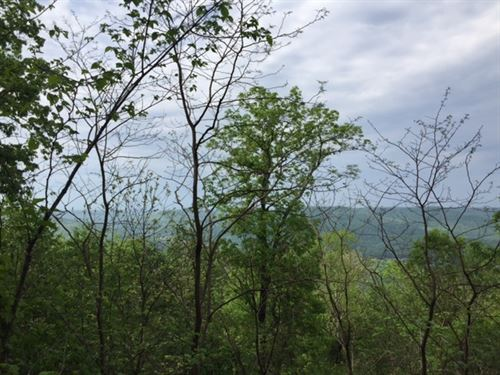 5.24+/-Acre Near Sewanee University : Sewanee : Marion County : Tennessee