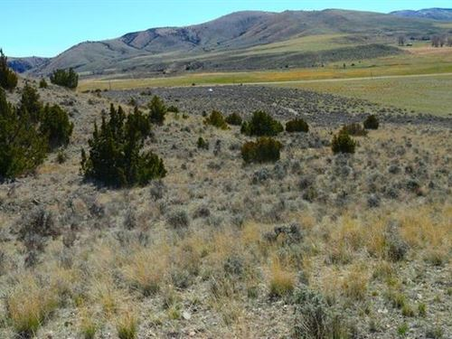 Three Forks Acreage : Three Forks : Gallatin County : Montana
