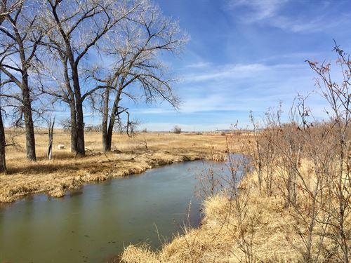 Coyote Crossing At Brackett Creek : Peyton : El Paso County : Colorado
