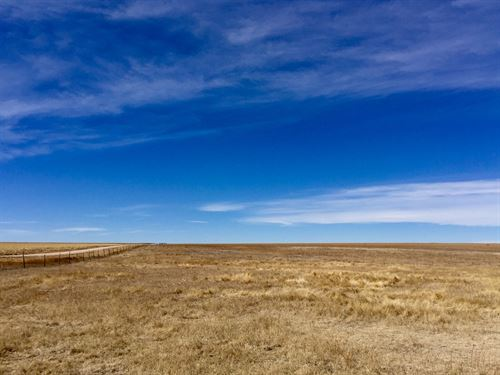 Matheson Prairie 100 : Matheson : Elbert County : Colorado