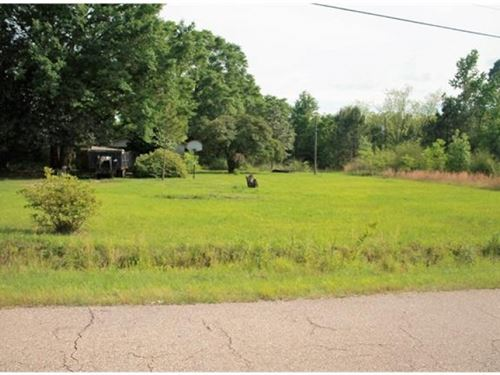 8.09 Acres In Independence La : Independence : Tangipahoa Parish : Louisiana