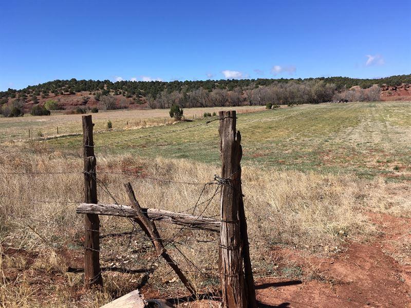 Pecos River Farmland : Ribera : San Miguel County : New Mexico