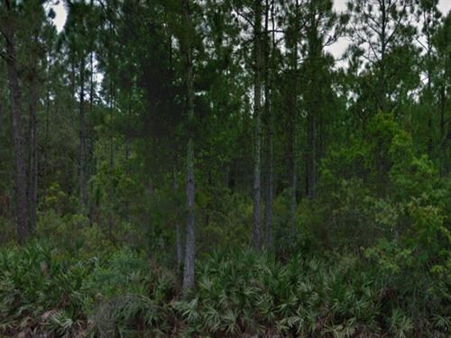 Polk County, Florida $17,500 Neg : Polk City : Polk County : Florida