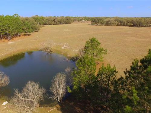 Foley Farm : Perry : Taylor County : Florida