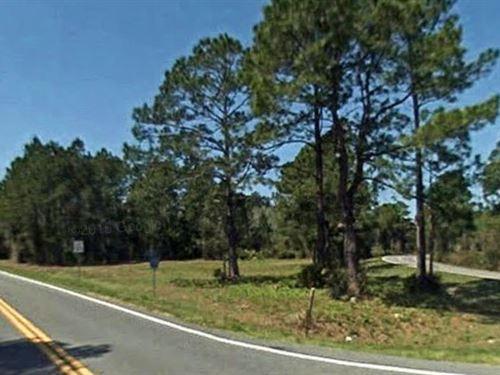 Marion County, Florida $205,000 Neg : Dunnellon : Marion County : Florida