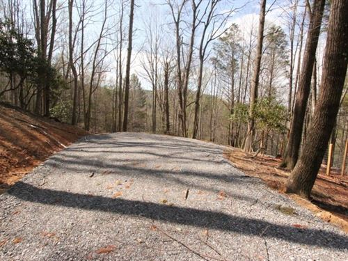 Buildable Wooded Tract In Mountains : Troutdale : Grayson County : Virginia