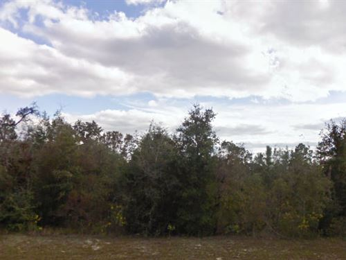 Washington County, Fl $17,000 Neg : Chipley : Washington County : Florida