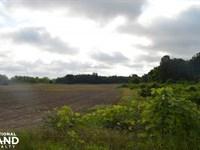 Tate County Looxahoma Circle Farm : Senatobia : Tate County : Mississippi