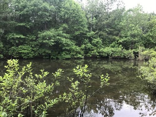 22 Acres With Electricity, Water An : Smithdale : Amite County : Mississippi