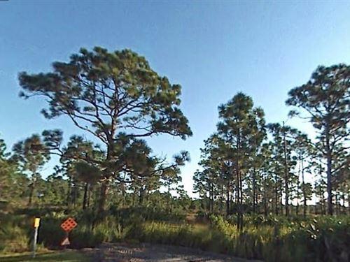 Brevard County, Florida $13,500 : Grant-Valkaria : Brevard County : Florida