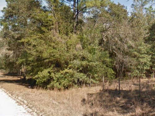 Levy County, Florida $30,000 Neg : Archer : Levy County : Florida