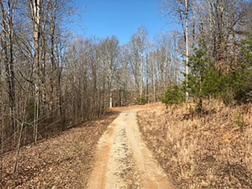 31.86 Acres, 3 Residential Lots : Albany : Clinton County : Kentucky