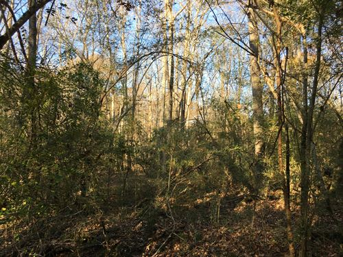 3.46 Acres Overlooks Silver Comet : Cedartown : Polk County : Georgia