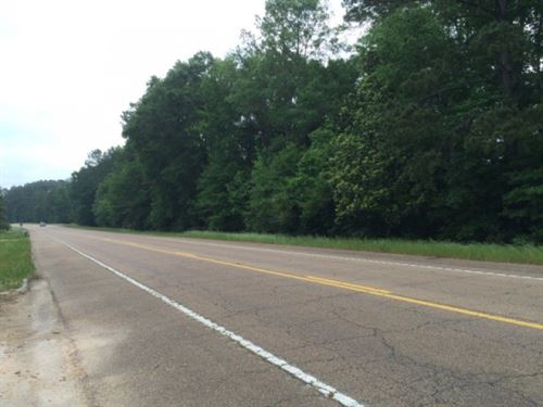 15 Acres +/ For Sale Walthall Count : Lexie : Walthall County : Mississippi