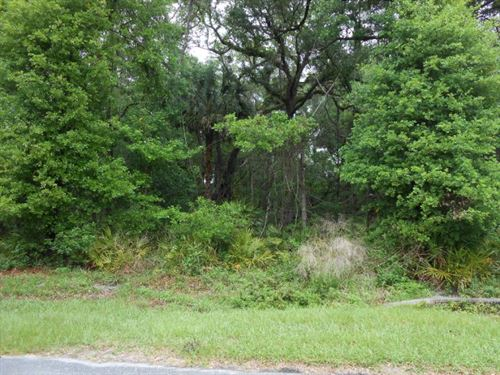 Nice Lot Just Reduced 771790 : Chiefland : Levy County : Florida