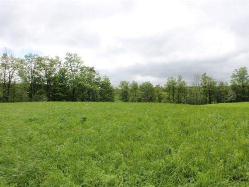 10 Acres Hobby Farm Morrisville Ny : Smithfield : Madison County : New York