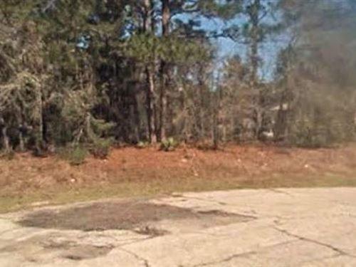 Marion County, Fl $22,000 Neg : Ocala : Marion County : Florida