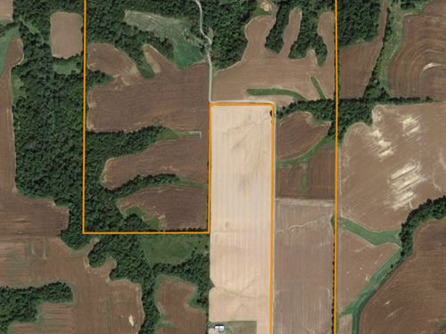 Beautiful Investment Farm : Milton : Pike County : Illinois