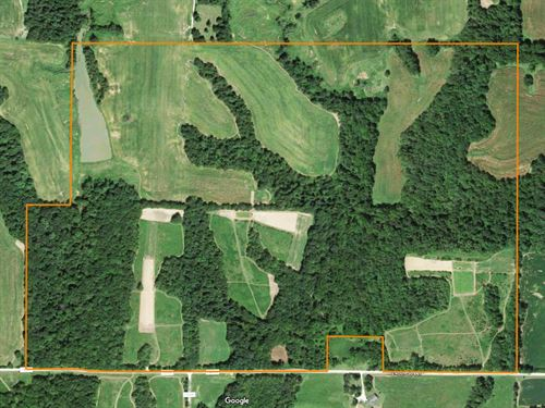 Excellent Hunting Farm : El Dara : Pike County : Illinois