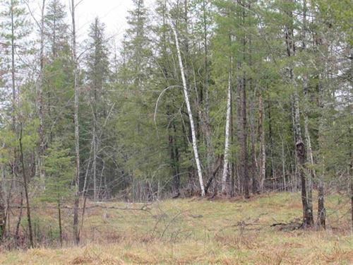 22 Acres M28 In Kenton 1101168 : Kenton : Houghton County : Michigan