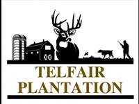 Telfair Plantation - New Pricing : Warrenton : Warren County : Georgia