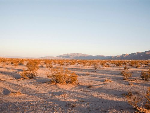 Stunning Offer Land With Power : Twentynine Palms : San Bernardino County : California