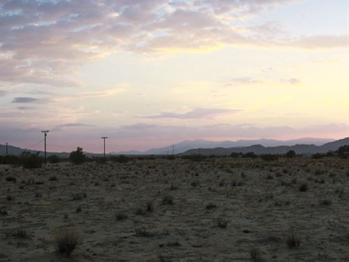 Not Far From Palm Springs : Twentynine Palms : San Bernardino County : California
