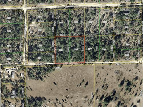 2.5 Acres For Sale In Bronson, Fl : Bronson : Levy County : Florida